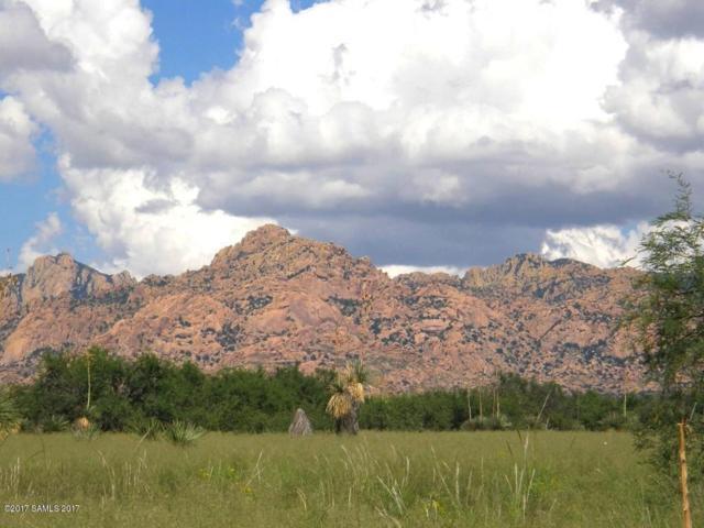 Lot 8 E Cochise Trail #8, Saint David, AZ 85630 (#171110) :: Long Realty Company