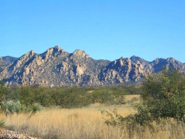 Lot 159 E Diamondback Road #159, Saint David, AZ 85630 (#171112) :: Long Realty Company