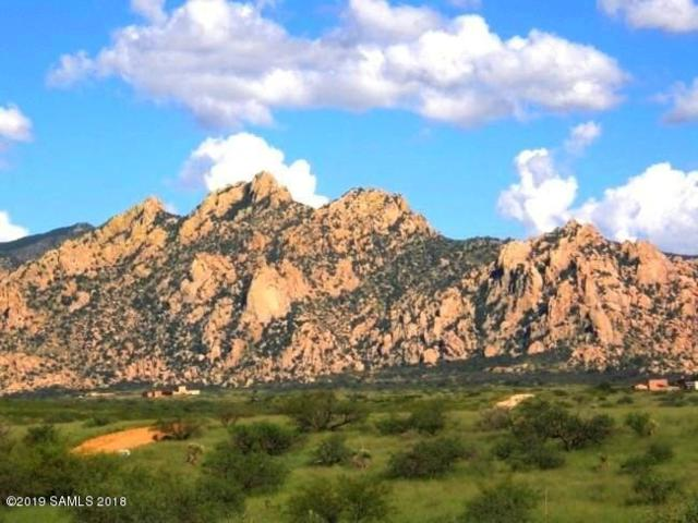 Lot 75 E Horse Ranch Road #75, Saint David, AZ 85630 (#171113) :: Long Realty Company