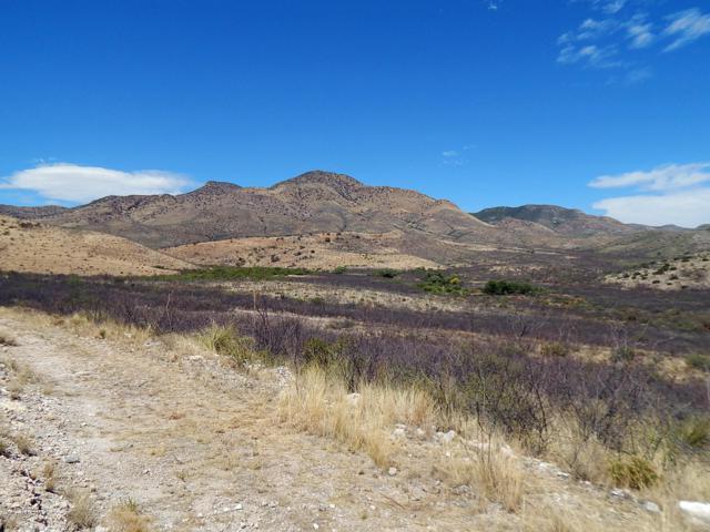 215 S Hidden Valley Road, Bisbee, AZ 85603 (MLS #171198) :: Service First Realty