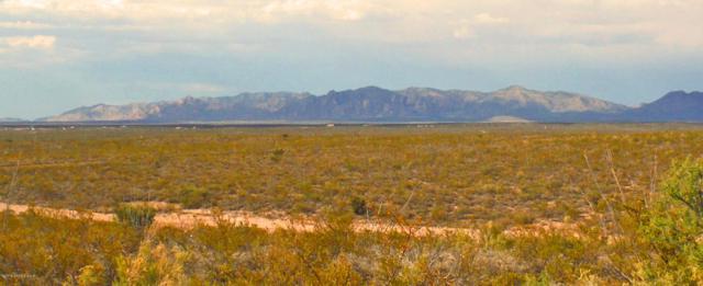 Tbd N Rustlers Ridge Rd, Tombstone, AZ 85638 (MLS #171241) :: Service First Realty