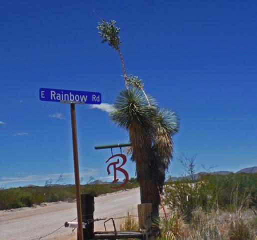 63 E Rainbow Road, Tombstone, AZ 85638 (MLS #171245) :: Service First Realty