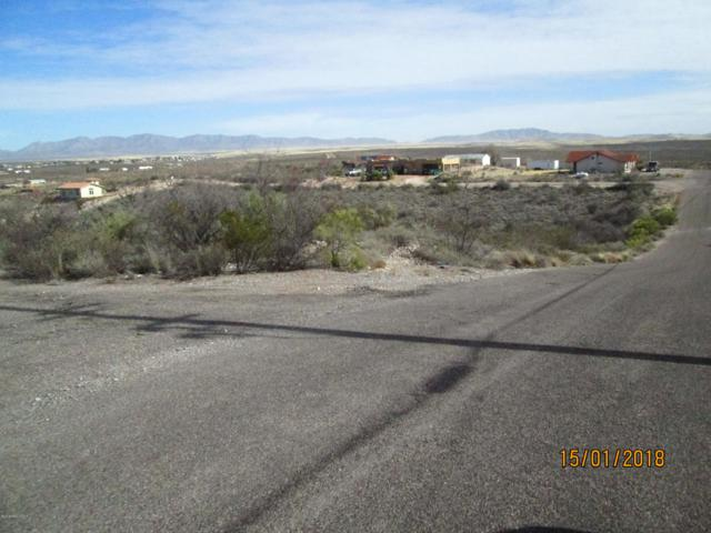 Lot 28-29 Papago Place, Tombstone, AZ 85638 (#171314) :: Long Realty Company