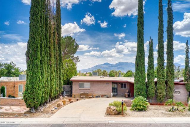 1172 Sahuaro Drive, Sierra Vista, AZ 85635 (MLS #171381) :: Service First Realty
