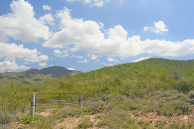 Address Not Published, Bisbee, AZ 85603 (#171482) :: Long Realty Company