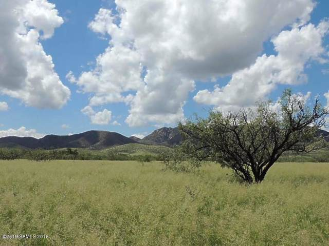 80 Ac On Ironwood & Stronghold Road, Cochise, AZ 85606 (MLS #171573) :: Service First Realty