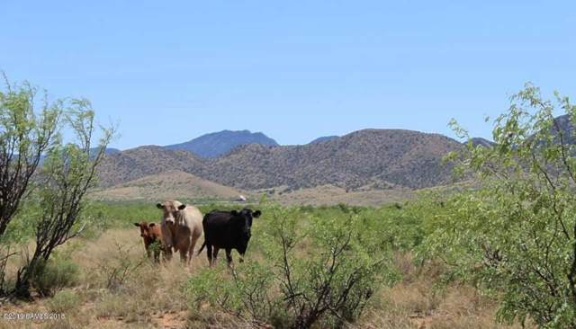 120 Ac On Ironwood Road, Cochise, AZ 85606 (MLS #171576) :: Service First Realty