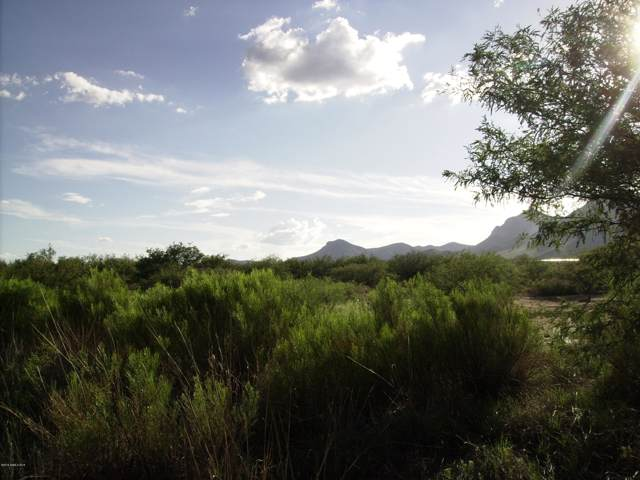 10455023p E Lane Ranch Road, Hereford, AZ 85615 (#171593) :: Long Realty Company