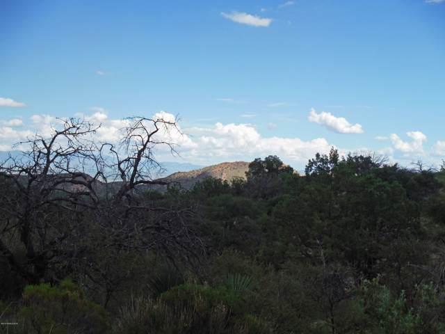 Tbd W Copper Belle Road, Elfrida, AZ 85610 (MLS #171594) :: Service First Realty