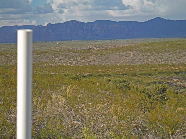 Tbd E Cactus Circle, Tombstone, AZ 85638 (MLS #171855) :: Service First Realty