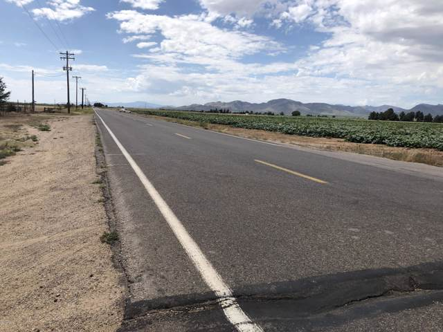 9910 N Fort Grant Rd, Willcox, AZ 85643 (MLS #171896) :: Service First Realty