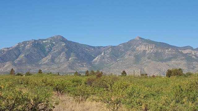 Lot A Lizard Trail, Hereford, AZ 85615 (MLS #171908) :: Service First Realty