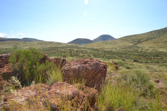 Lot 207 Ash Creek Ranch #207, Pearce, AZ 85625 (#171948) :: Long Realty Company