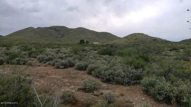 Tbd N Noogard Lane, Cochise, AZ 85606 (MLS #171999) :: Service First Realty