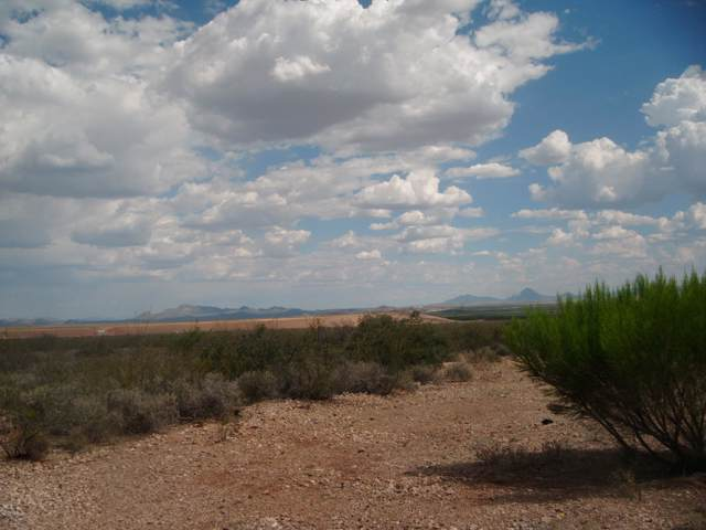Tbd N Central Highway, Mcneal, AZ 85617 (#172184) :: Long Realty Company
