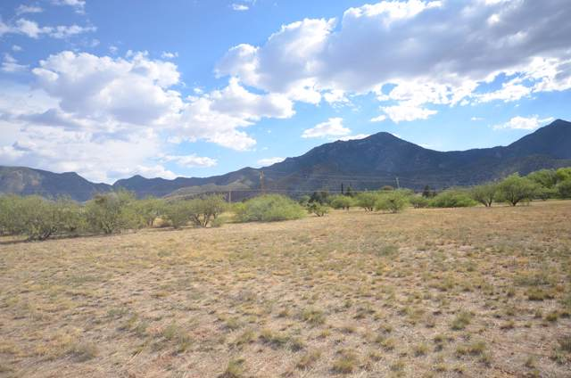 Tbd E Valley Vista Drive, Hereford, AZ 85615 (MLS #172187) :: Service First Realty
