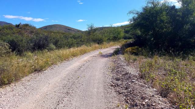 Lot 9 W Red Mountain Road, Bisbee, AZ 85603 (MLS #172200) :: Service First Realty