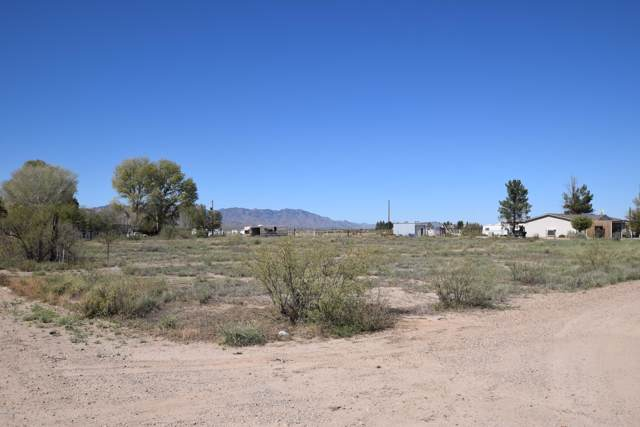 Tbd Moores Lane, Willcox, AZ 85643 (MLS #172226) :: Service First Realty
