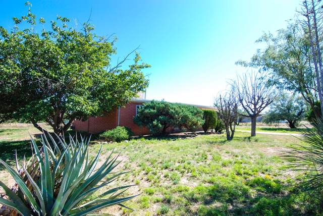 2066 N Holly Place, Huachuca City, AZ 85616 (MLS #172298) :: Service First Realty