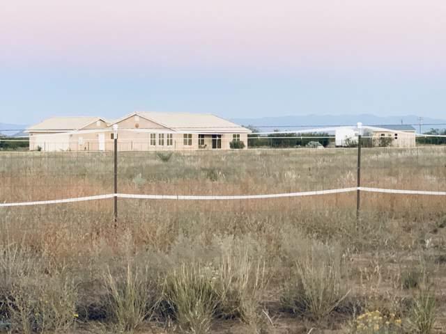 1176 W Trigger Lane, Cochise, AZ 85606 (MLS #172329) :: Service First Realty