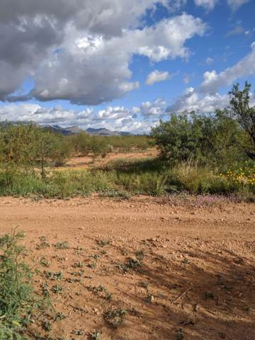Tbd E Hwy 82, Whetstone, AZ 85616 (MLS #172338) :: Service First Realty