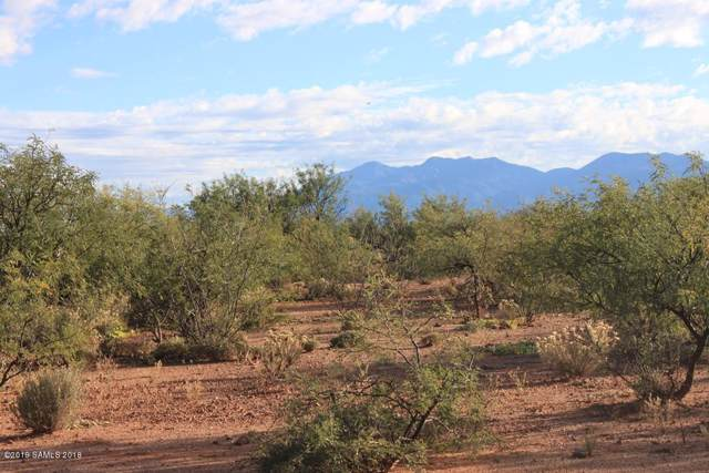 019p E Elijah Place, Huachuca City, AZ 85616 (MLS #172384) :: Service First Realty