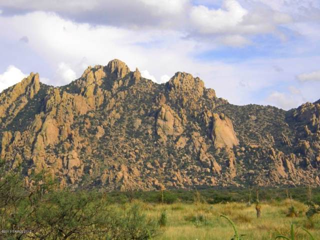 Lot 192 E Diamondback Road #192, Saint David, AZ 85630 (#172399) :: Long Realty Company