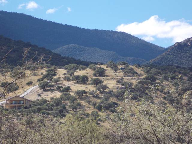 Tbd Moonrise Trail, Hereford, AZ 85615 (MLS #172403) :: Service First Realty