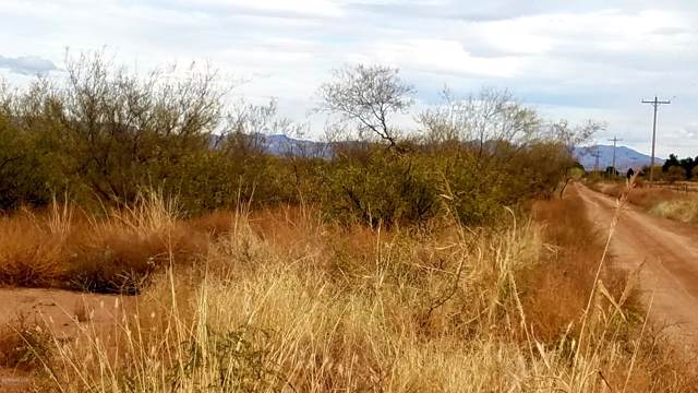Tbd W Buford Lane, Mcneal, AZ 85617 (#172429) :: Long Realty Company