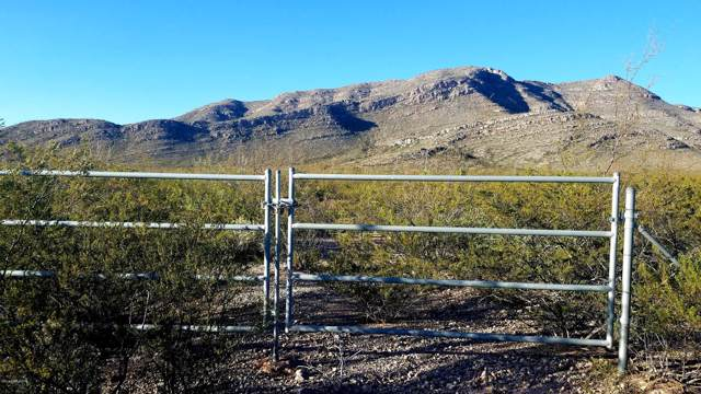 Lot 4 S Macks Way, Tombstone, AZ 85638 (MLS #172434) :: Service First Realty
