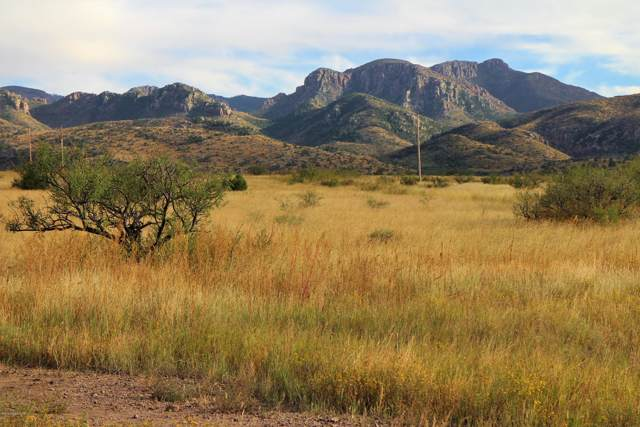 Tbd Pinery Canyon Road, Cochise, AZ 85606 (MLS #172496) :: Service First Realty