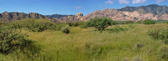Tbd W Ironwood Road, Cochise, AZ 85606 (MLS #172497) :: Service First Realty
