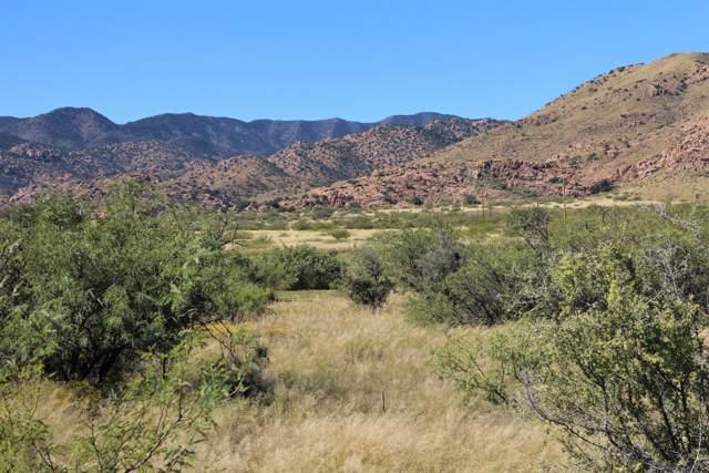 Tbd W Pearce Road #168, Cochise, AZ 85606 (MLS #172498) :: Service First Realty