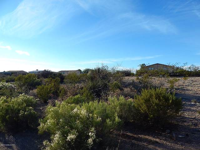 Tbd San Pedro Way Lot #235, Tombstone, AZ 85638 (MLS #172628) :: Service First Realty