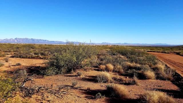 Lot 81 N High Lonesome Road, Elfrida, AZ 85610 (#172714) :: Long Realty Company