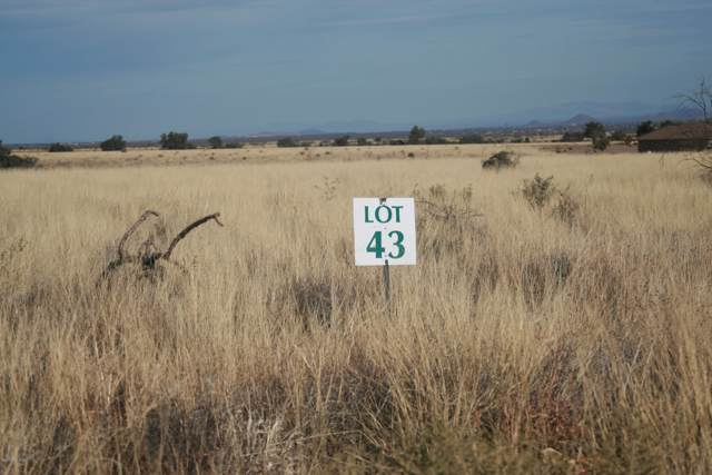 Tbd Lot 43 Hackney Drive, Hereford, AZ 85615 (MLS #172954) :: Service First Realty