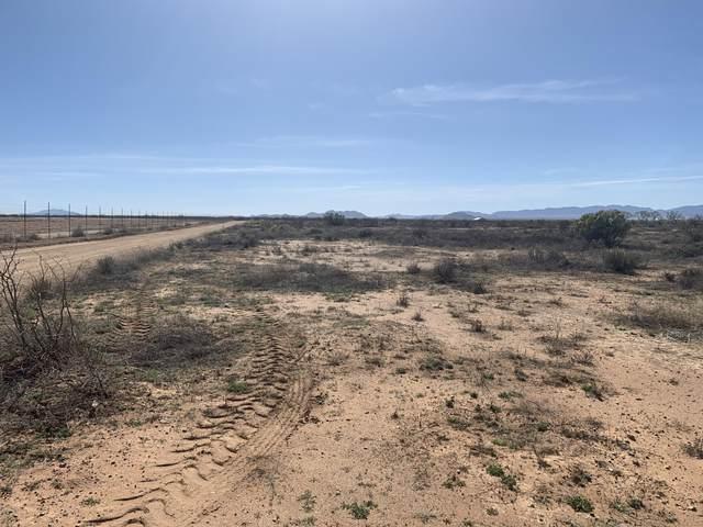 Tbd Willcox Land -019T, Willcox, AZ 85643 (MLS #173004) :: Service First Realty