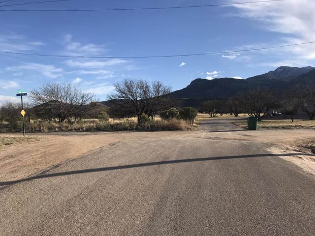 10 Ac E Loma Lane, Hereford, AZ 85615 (MLS #173069) :: Service First Realty
