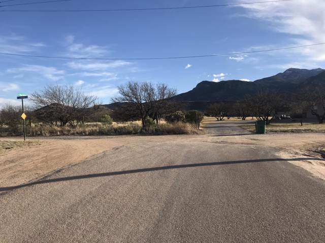 8 Ac E Loma Lane, Hereford, AZ 85615 (MLS #173071) :: Service First Realty