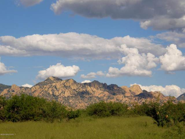 Lot 50 S De Niza Road #50, Saint David, AZ 85630 (#173124) :: Long Realty Company