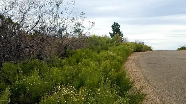Lot 242 San Pedro Way, Tombstone, AZ 85638 (#173126) :: Long Realty Company