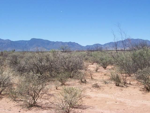1620 S Homestead Road, Sierra Vista, AZ 85635 (MLS #173150) :: Service First Realty