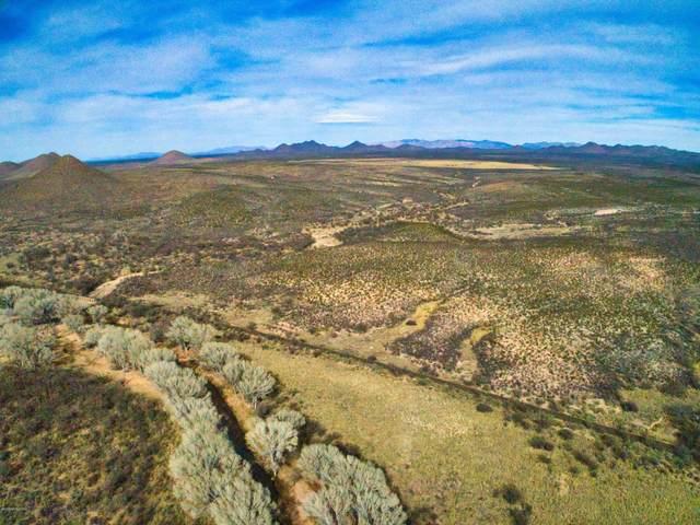 1040 W Wanagi Ranch Rd., Tombstone, AZ 85638 (#173166) :: The Josh Berkley Team
