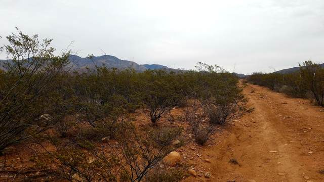 Tbd W Red Mountain Road, Bisbee, AZ 85603 (#173223) :: Long Realty Company