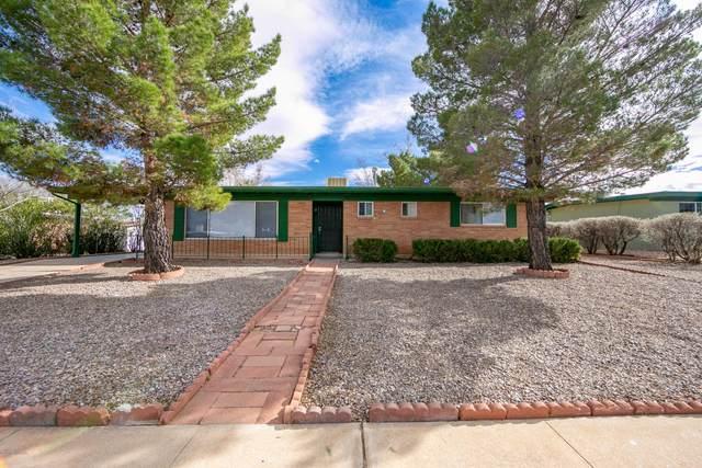 2964 Meadowlark Drive, Sierra Vista, AZ 85635 (#173262) :: Long Realty Company