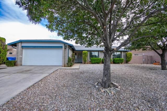 3681 E Sandpiper Drive, Sierra Vista, AZ 85650 (#173421) :: The Josh Berkley Team