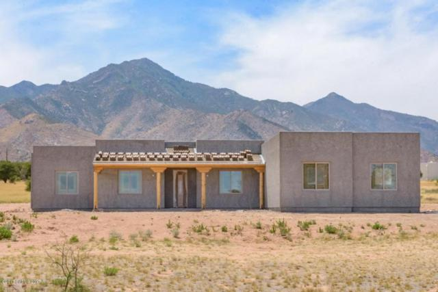 10136 S Wilderness Road Lot 4, Hereford, AZ 85615 (MLS #163086) :: Service First Realty