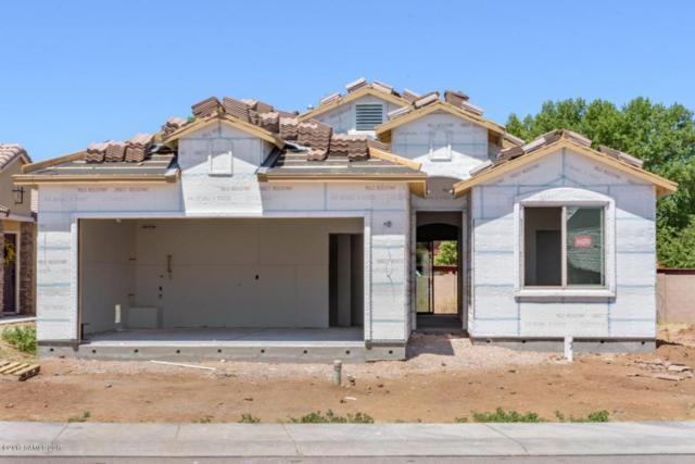 1402 Bonnie View Place Lot 14, Sierra Vista, AZ 85635 (MLS #163104) :: Service First Realty