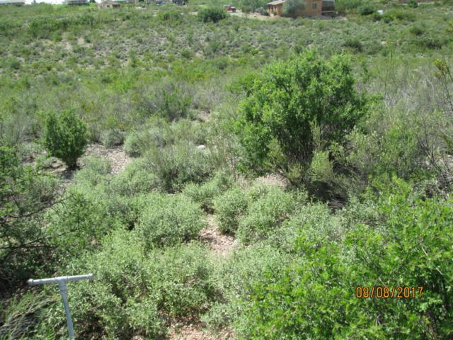 Lot 85 N Apache Drive, Tombstone, AZ 85638 (MLS #164173) :: Service First Realty