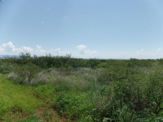 Lot 55 Tombstone Heritage Ranch, Mcneal, AZ 85617 (MLS #164177) :: Service First Realty